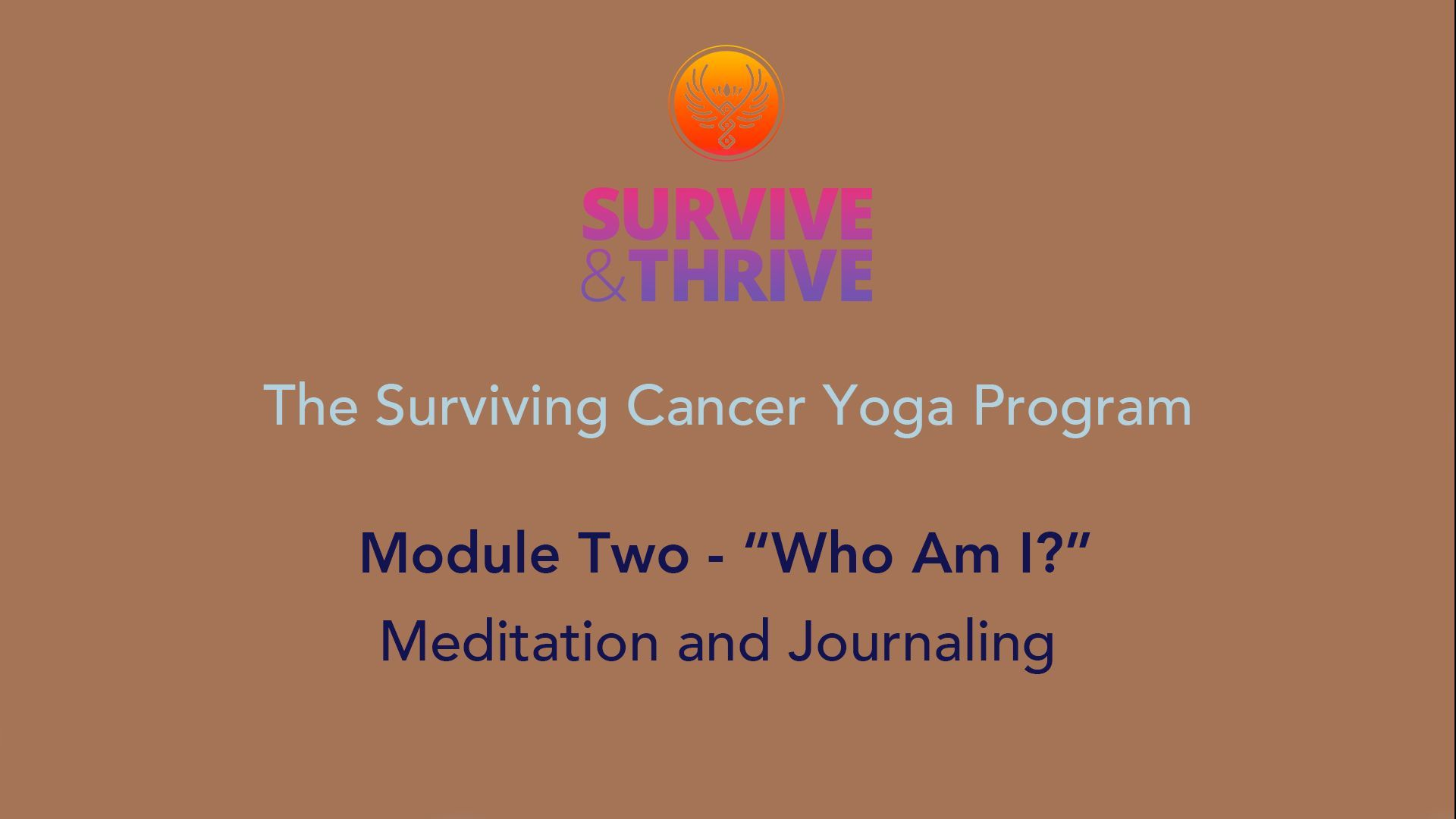 SURVIVE AND THRIVE | MODULE 2 - WHO AM I? | MEDITATION
