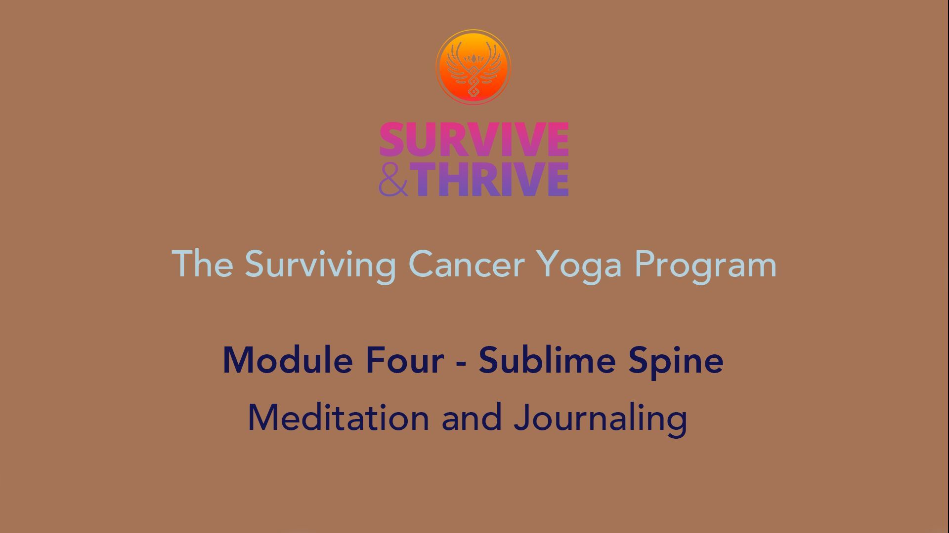 SURVIVE AND THRIVE | MODULE 4 - SUBLIME SPINE | MEDITATION