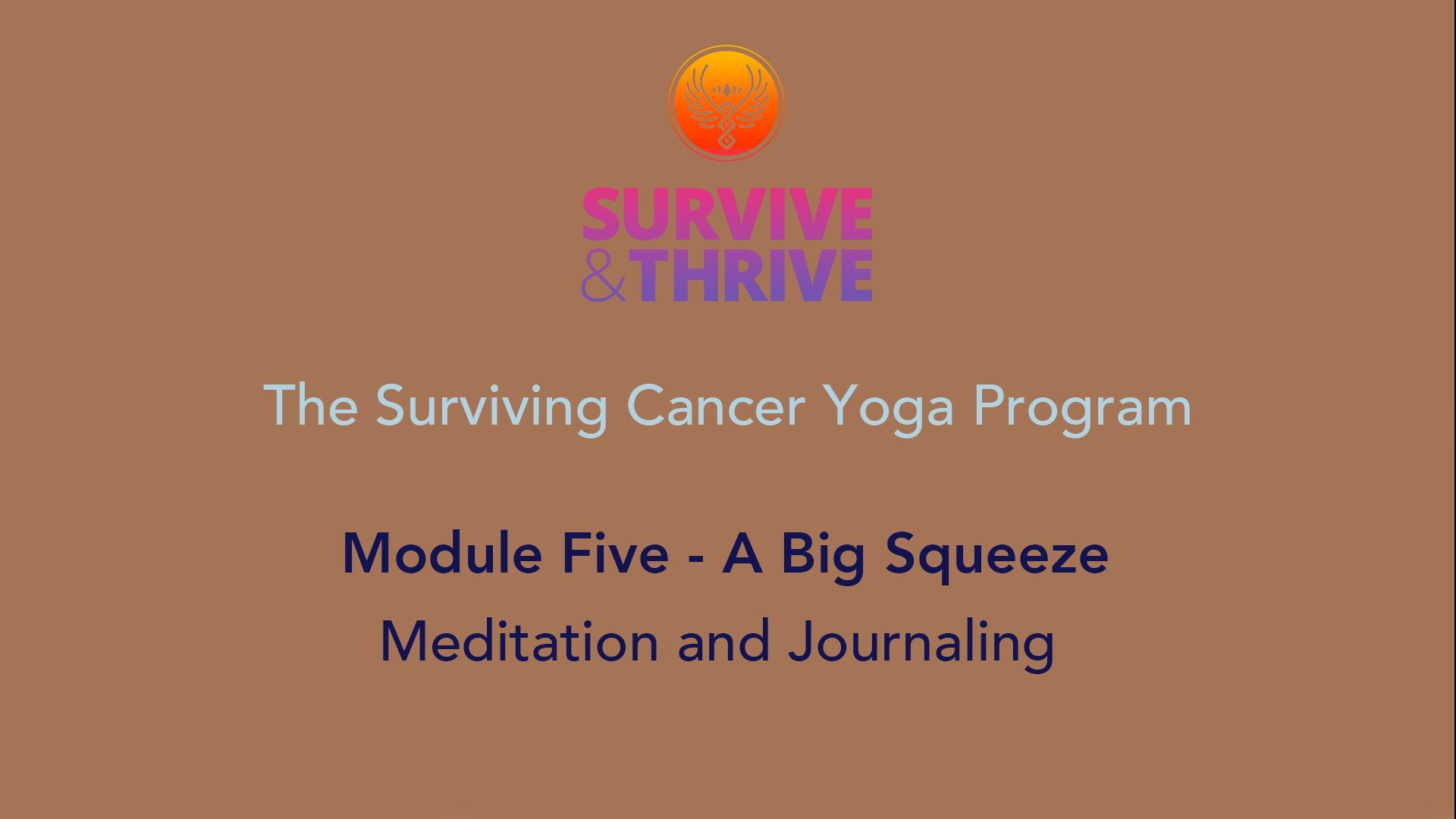 SURVIVE AND THRIVE | MODULE 5 - A BIG SQUEEZE | MEDITATION