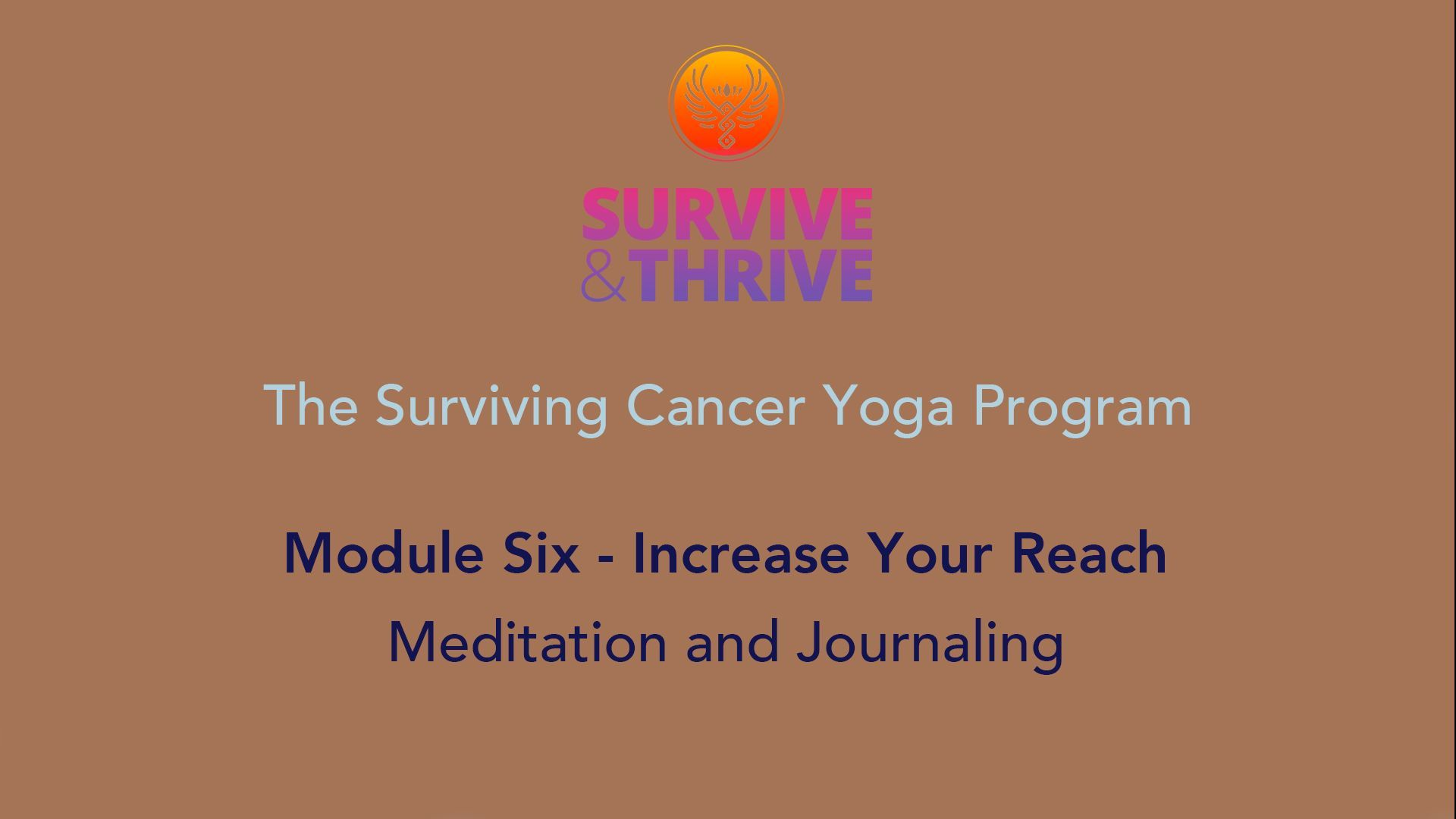 SURVIVE AND THRIVE | MODULE 6 - INCREASE YOUR REACH | MEDITATION