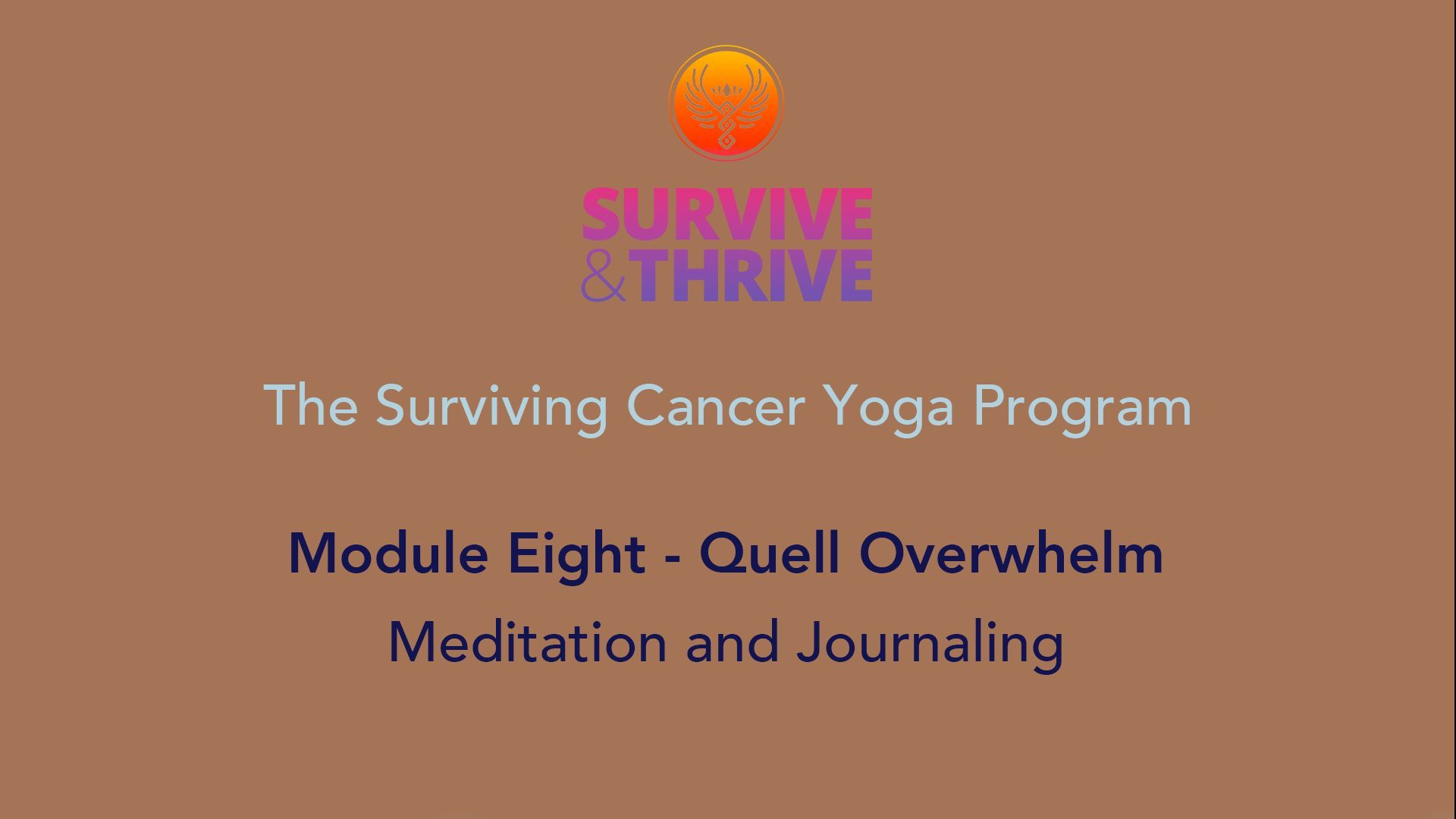 SURVIVE AND THRIVE | MODULE 8 - QUELL OVERWHELM | MEDITATION